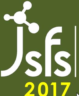Logo-JSFS